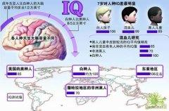 爱因斯坦大脑的秘密